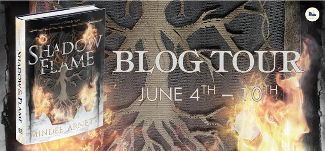 blog tour book promotion
